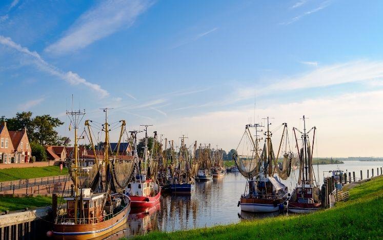 Ostfriesland Immobilienmakler